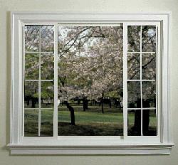 Replacement Window Styles Md Dc Va Ga